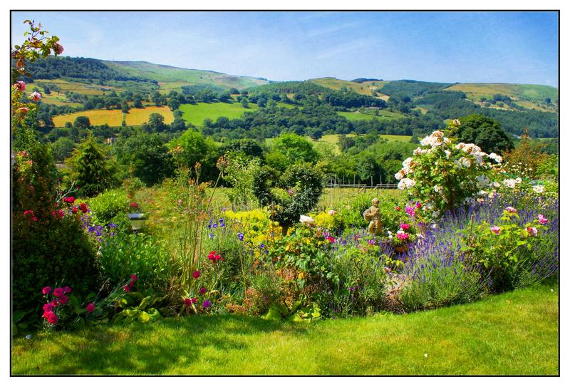 English Landscape. An English landscape over the hills and dales. The flowers are so beautiful and compliment the view. An amazing backdrop to look at through stock images