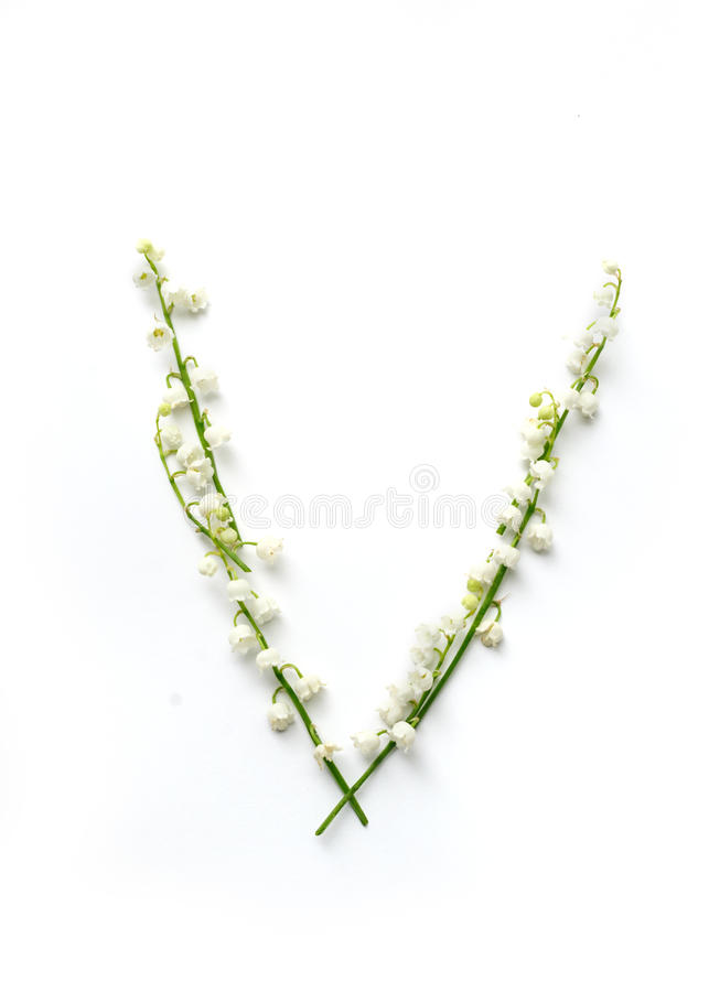 English letter V in the alphabet of flowers bells. Calligraphy lettering stock photography