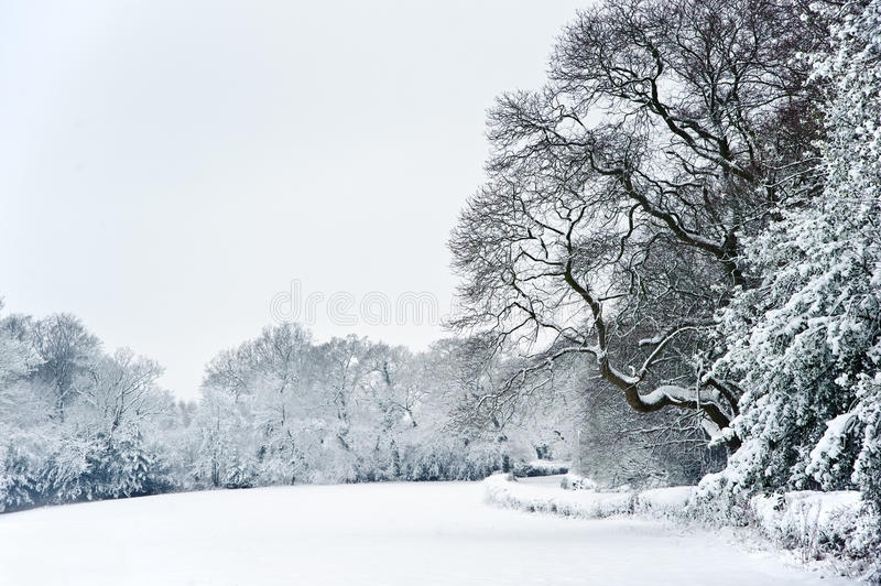 Download English Rural Countryside Winter Snow Landscape Stock Image - Image: 26674497