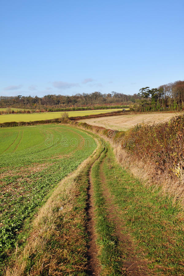 Download An English Rural Landscape In The Chiltern Hills Stock Photo - Image: 22282724