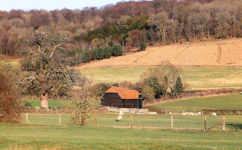 An English Rural Landscape stock photos
