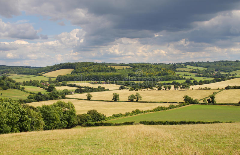 Download An English Rural Landscape In Summer Stock Images - Image: 10316884