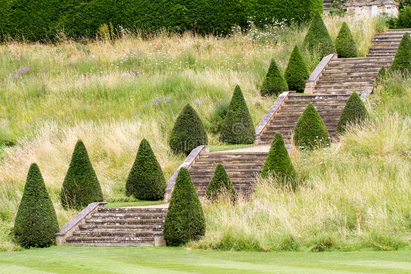 A English stately home garden stairway. A english stately home garden with topiary trees and grand stairs steps royalty free stock photos