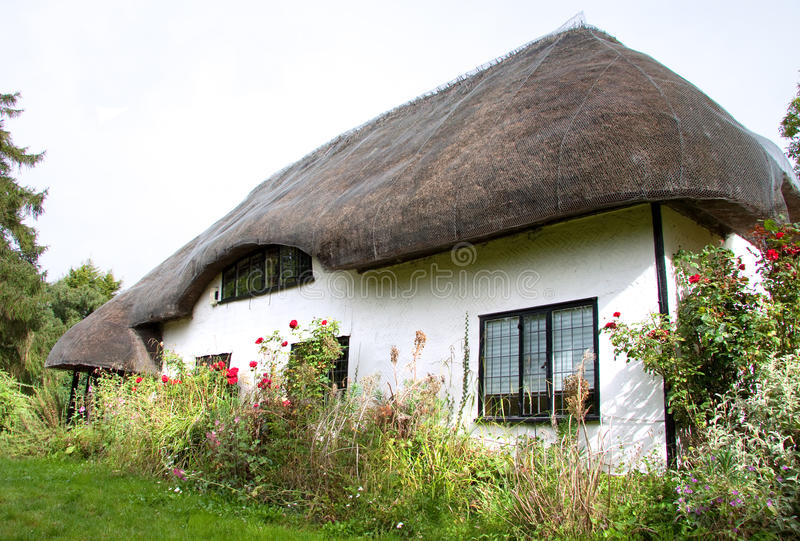 English thatched cottage. White thatched cottage, a Grade II listed building, in a country garden in rural England royalty free stock images