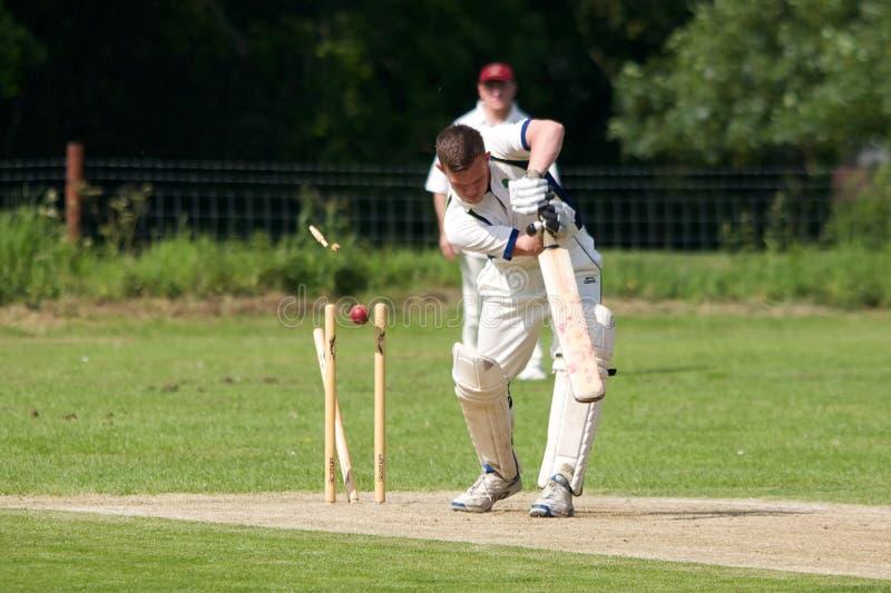 English Cricket royalty free stock photo