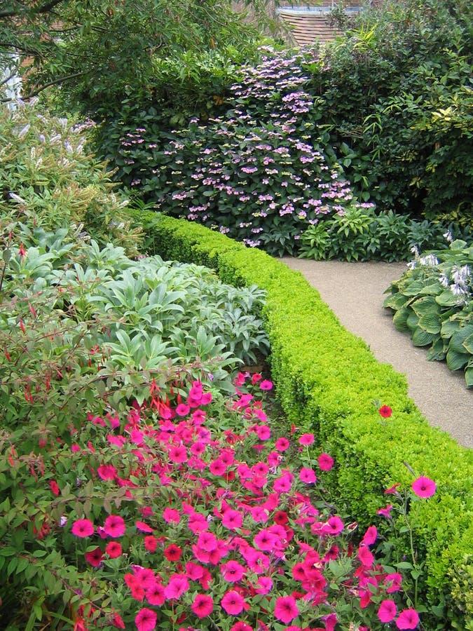 Download English Walking Path stock image. Image of beautiful, colorful - 116259