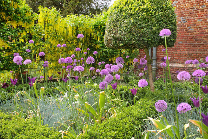 An English Walled Garden royalty free stock photos