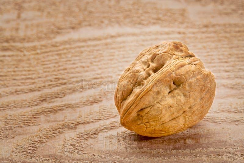 English walnut on wood royalty free stock image