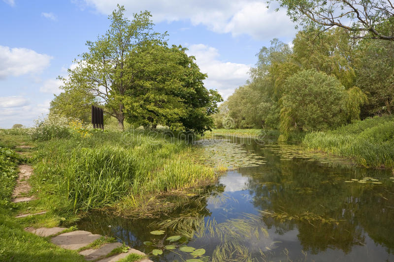 English waterway. An english landscape and waterway with trees and aquatic plants under a blue springtime sky royalty free stock images