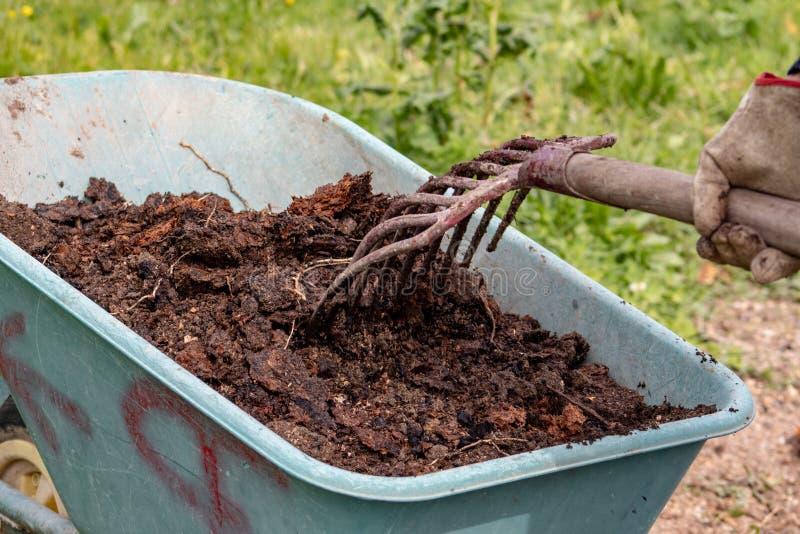 Engrais : bio engrais naturel organique dans une brouette de roue avec la fourche La vie de ferme photo stock