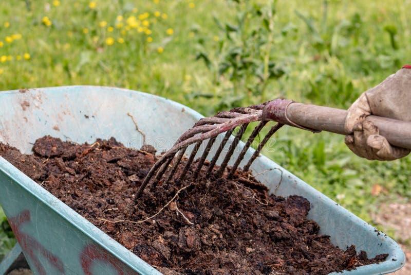 Engrais : bio engrais naturel organique dans une brouette de roue avec la fourche La vie de ferme photo libre de droits