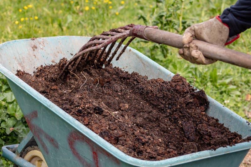 Engrais : bio engrais naturel organique dans une brouette de roue avec la fourche La vie de ferme images libres de droits