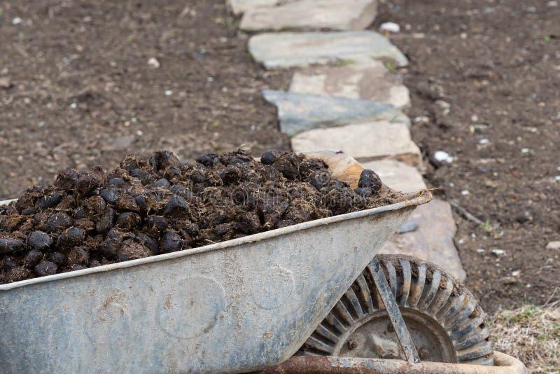 Engrais de cheval et roue de jardin sur le jardin Fertilisation de sol photos libres de droits
