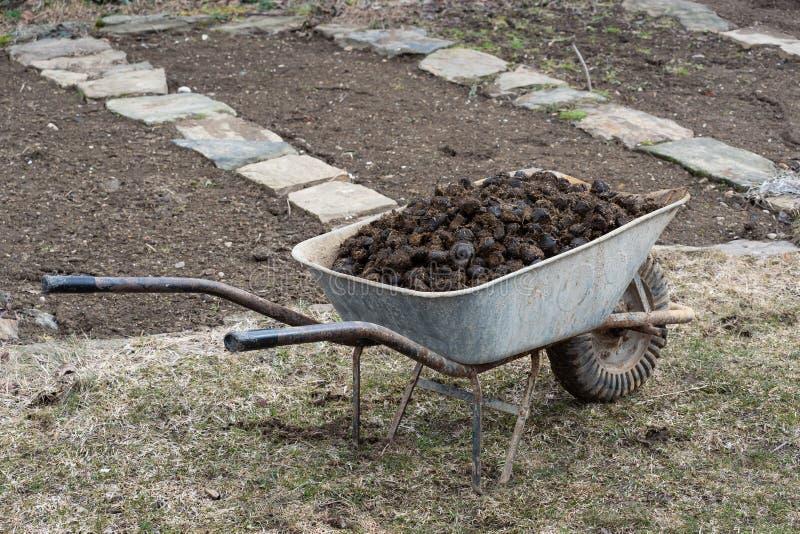 Engrais de cheval et roue de jardin sur le jardin Fertilisation de sol images stock