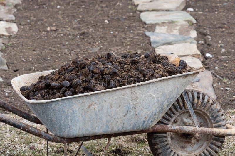 Engrais de cheval et roue de jardin sur le jardin Fertilisation de sol et pile d'engrais photos libres de droits