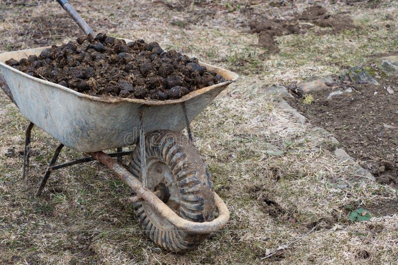Engrais de cheval et roue de jardin sur le jardin Fertilisation de sol et pile d'engrais photos stock