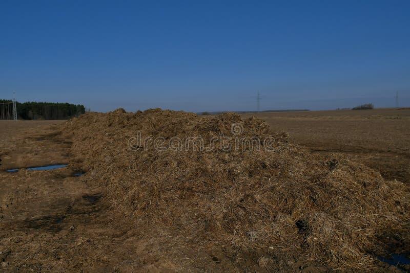 Engrais organique fermenté, engrais pour l'agriculture images libres de droits