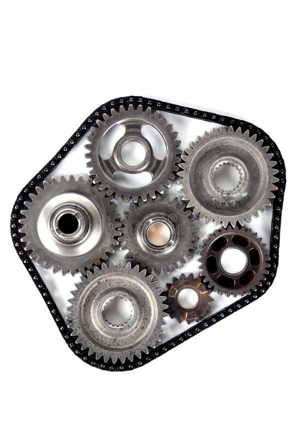 Engranajes de la ingeniería del diente foto de archivo