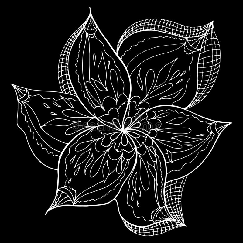 Engraved hand drawn abstract orchid. Retro flowers hand outline orchid, great design for any purposes. Outline vector. Nature stock illustration