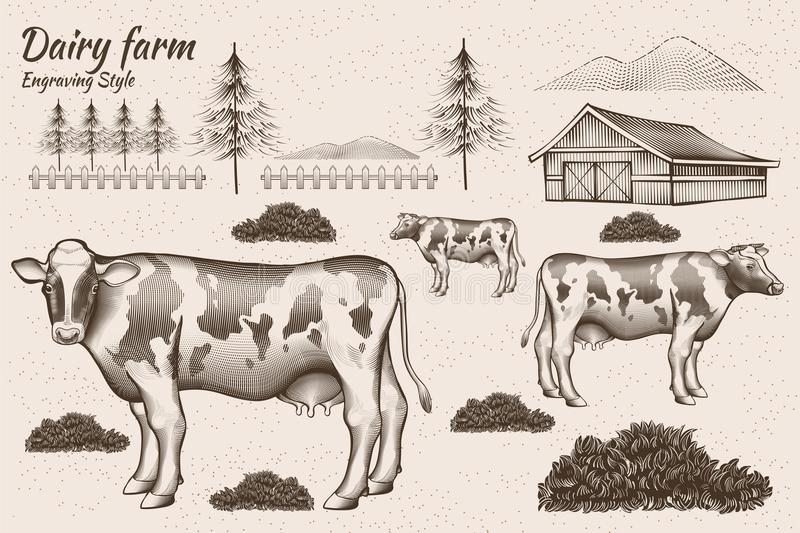 Engraving style dairy cattle. And farmland design element stock illustration