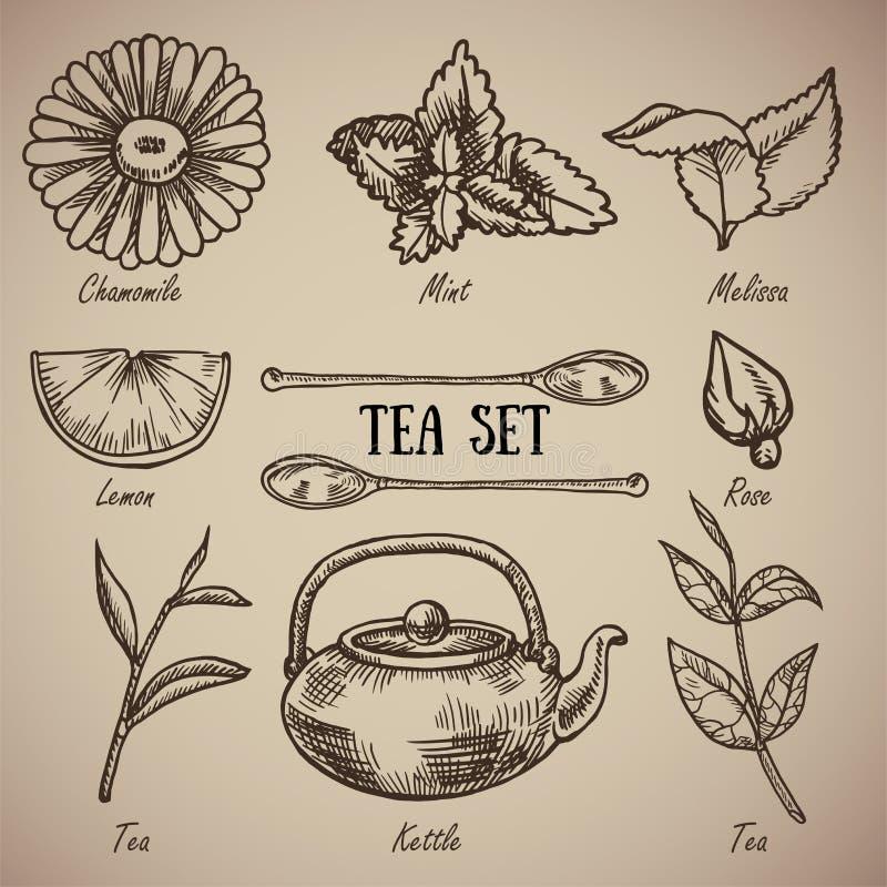 Engraving a tea set: chamomile, lemon balm, mint, lemon, spoons, rose, tea leaves, kettle. A vintage set of a tea. Drunkard. Engraving menu for the restaurant stock illustration