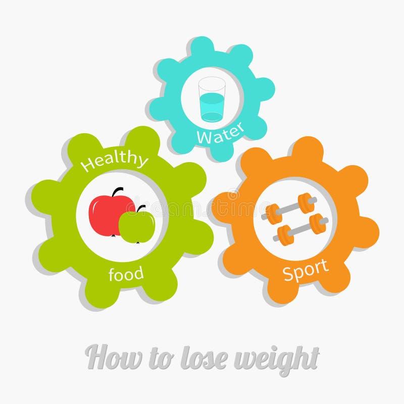A engrenagem colorida da roda denteada ajustou-se com água, maçã, dumbell Conceito saudável do estilo de vida Como perder o proje ilustração stock