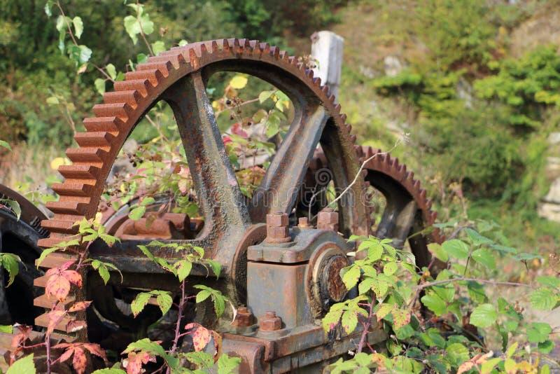Engrenagem velha do mecânico nas madeiras fotos de stock