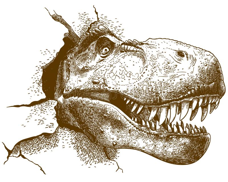 Engring illustration av tyrannosaurus royaltyfri illustrationer