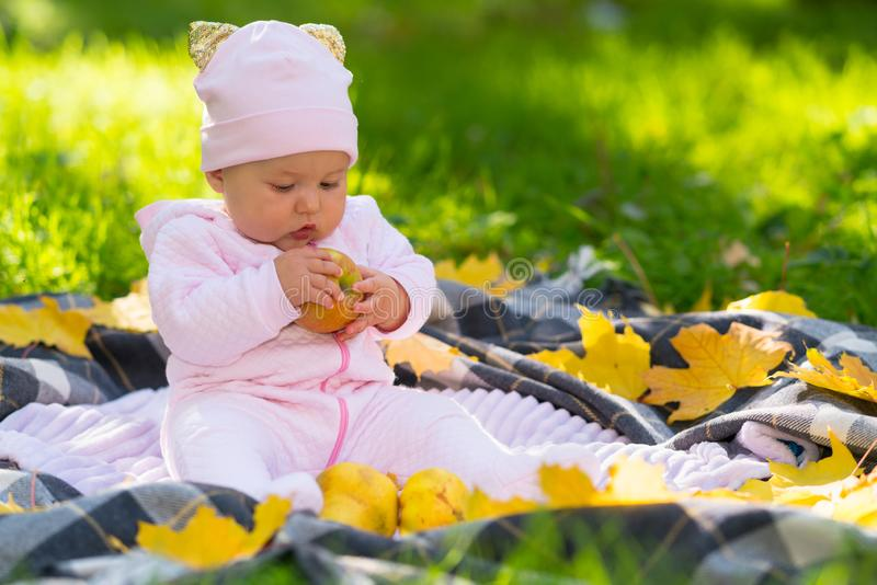 Engrossed little baby girl examining a fresh apple. Engrossed little baby girl examining a fresh apple as she sits on a blanket in a park in autumn surrounded royalty free stock image