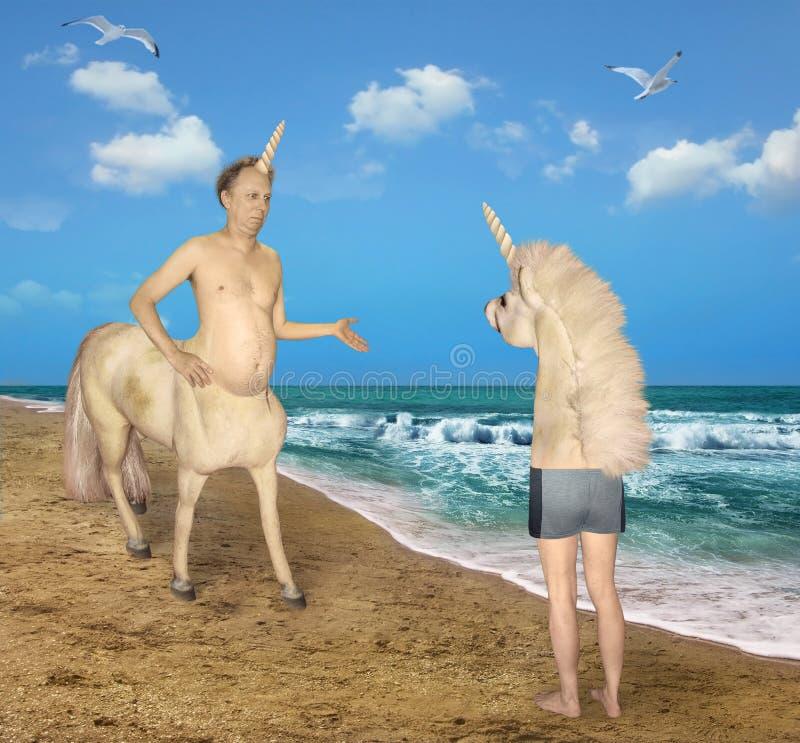 Enhörningen möter en konstig häst 2 fotografering för bildbyråer