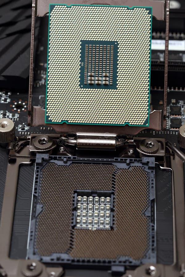Enhet för central processor på moderkortet royaltyfria foton