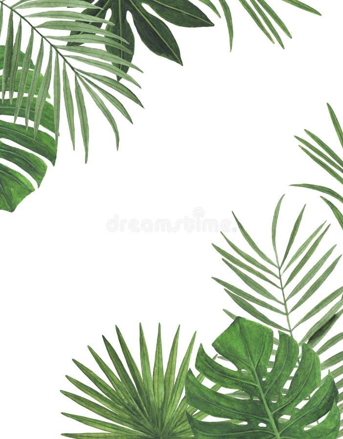 Enhorabuena botánica de la decoración del diseño de la invitación de la postal de la decoración de las decoraciones de los ejempl fotografía de archivo libre de regalías