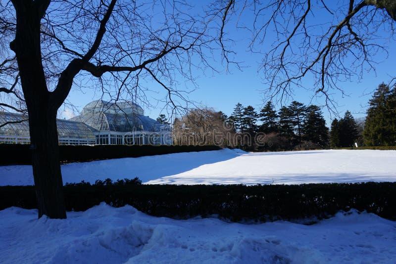 Enid a Консерватория 18 Haupt стоковая фотография