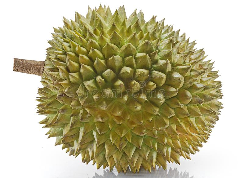 Enig die Durian-fruit op witte achtergrond wordt geïsoleerd stock foto