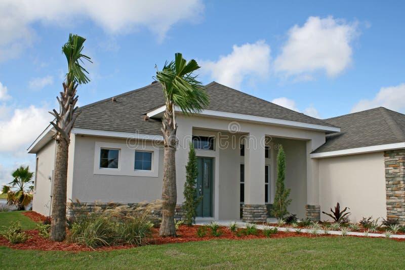 Download Enig familiehuis stock afbeelding. Afbeelding bestaande uit fronds - 8728227