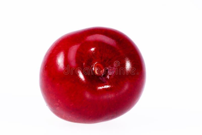 Enig fruit van rode die kers op witte achtergrond wordt geïsoleerd stock afbeeldingen
