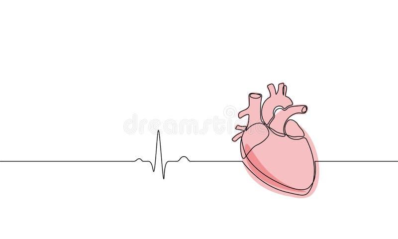 Enig ononderbroken anatomisch menselijk het hartsilhouet van de lijnkunst Gezond geneeskundeconceptontwerp één de tekening van he vector illustratie