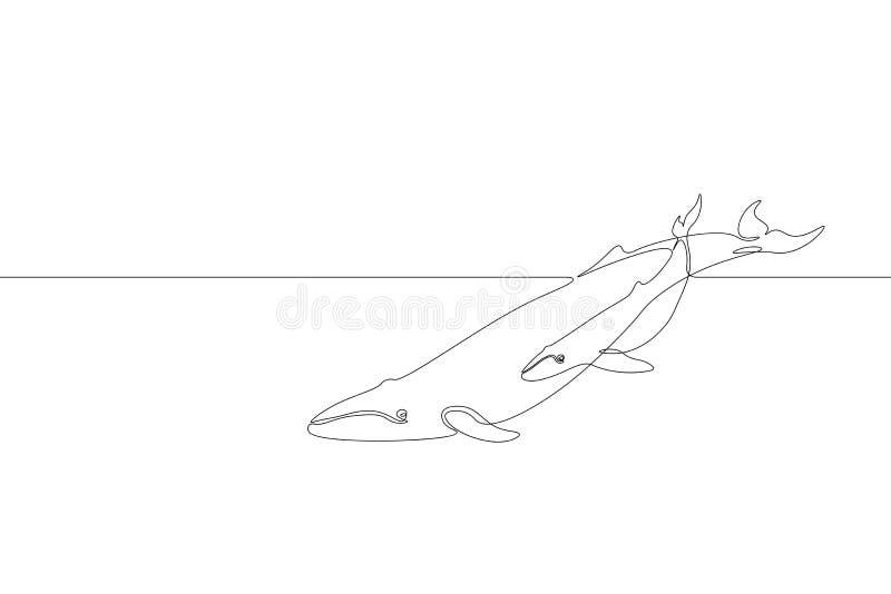 Enig ononderbroken van de de walvisouder van de lijnkunst marien de babysilhouet Concept van het het levensmilieu van de aard het royalty-vrije illustratie