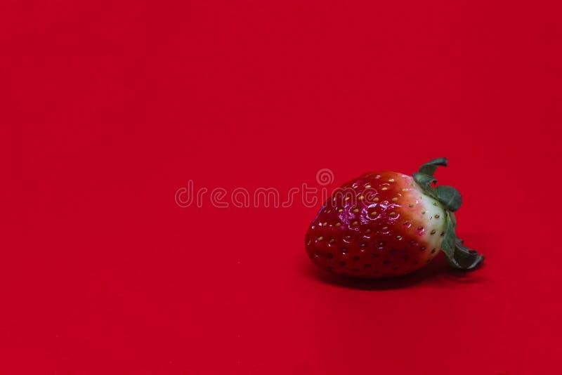 Enige Aardbei op een Rode Achtergrond stock foto