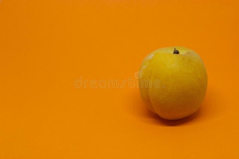 Enige Abrikoos op een Oranje Achtergrond royalty-vrije stock foto