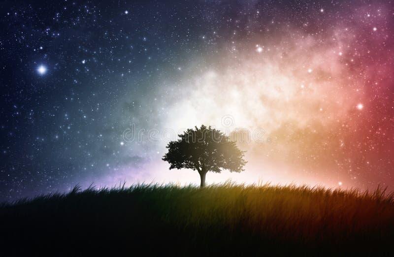 Enige boom ruimteachtergrond