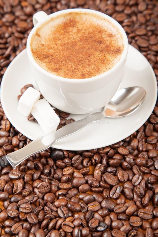 Enige die kop van cappuccino door koffiebonen wordt omringd royalty-vrije stock foto