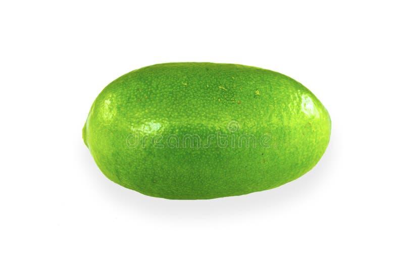 Enige Groene Citroen stock afbeelding