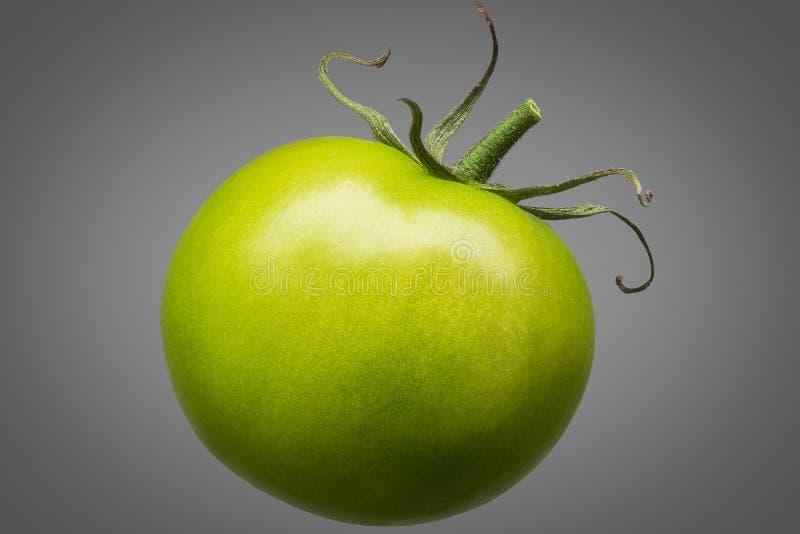 Enige groene die tomaat op grijze achtergrond wordt geïsoleerd royalty-vrije stock afbeeldingen