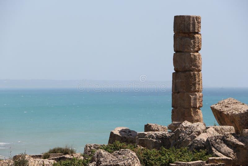 Enige oude Dorische Griekse kolom, selinunte stock foto's
