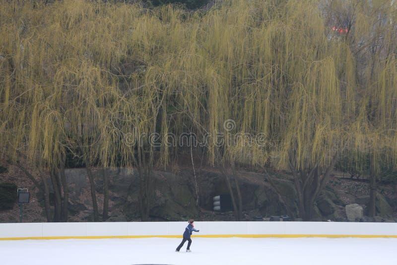 Enige schaatser op Wollman-Piste in de Stad van New York royalty-vrije stock foto