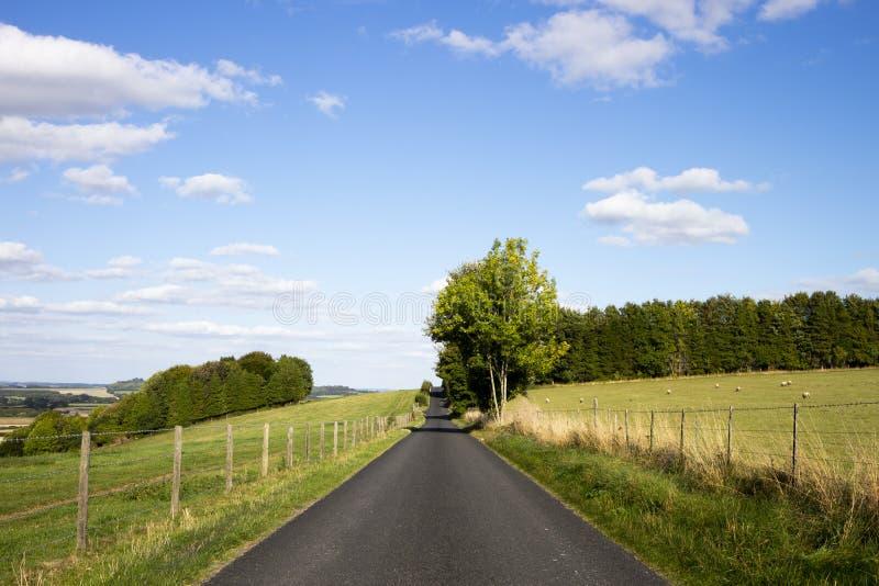 Enige steeglandweg en landbouwgrond stock foto