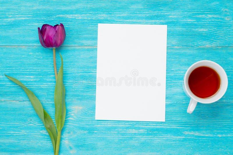 Enige tulp met leeg document blad royalty-vrije stock afbeelding