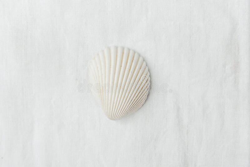 Enige Vlakke Semi Cirkel Zuivere Witte Overzees Shell op de Achtergrond van de Linnenstof Minimalistische Moderne Gestileerde Soc stock fotografie