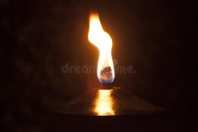 Enige vlam royalty-vrije stock afbeelding